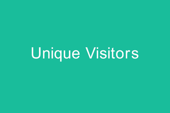 Unique Visitors