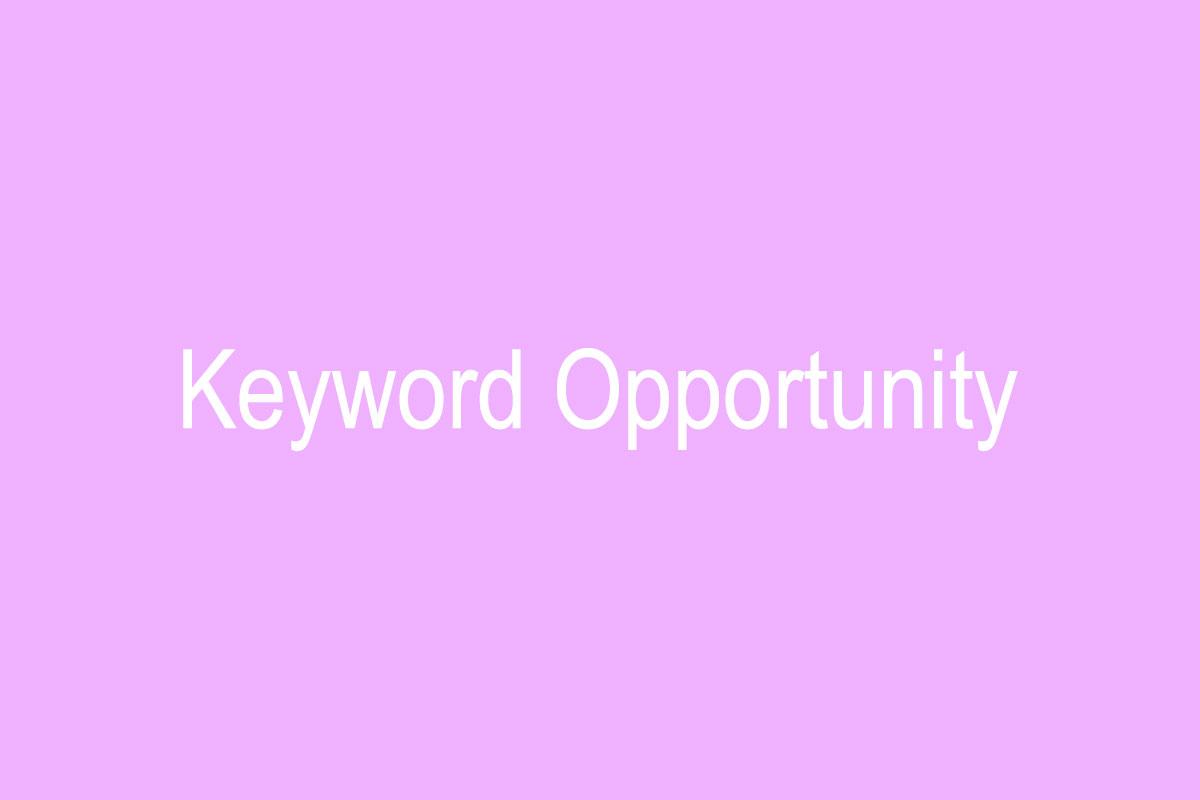 کلمات کلیدی فرصت